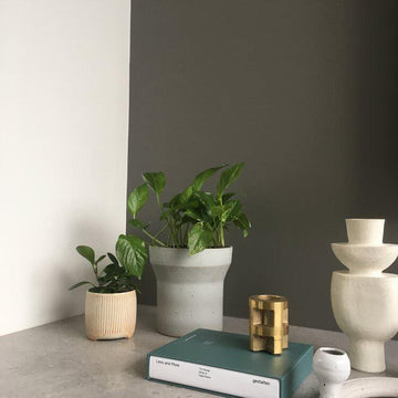 Funnel Tall Planter Grey by Anchor Ceramics with plants
