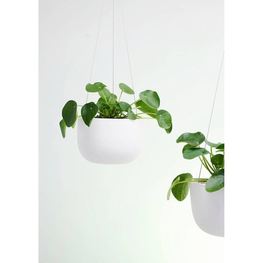 Raw Earth Hanging Planters by Angus & Celeste