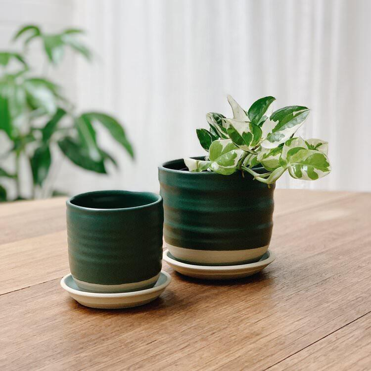 Straight Planter by Katherine Mahoney