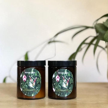 The Plant Society Botanical Candle homewares