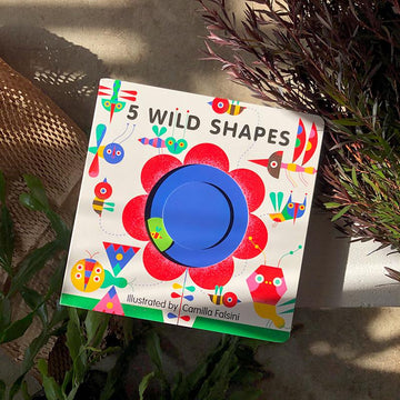5 Wild Shapes Camilla Falsini children's book