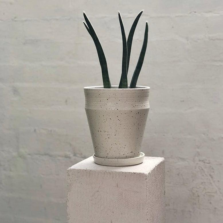 White Satin Ridge Planters by Alison Frith