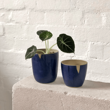 Cobalt Blue Planter by Arcadia Scott glaze pot ceramic handmade greenery alocasia black velvet