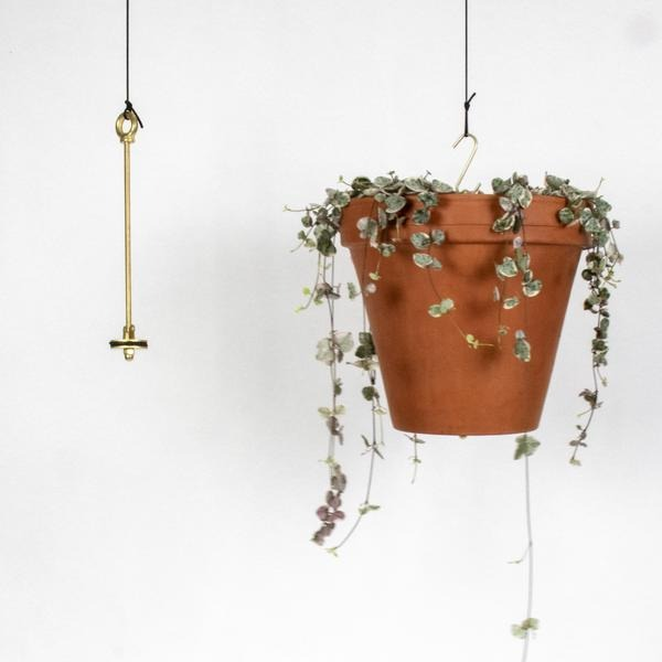 Bolty Hanging System by Botanopia - THE PLANT SOCIETY ONLINE OUTPOST