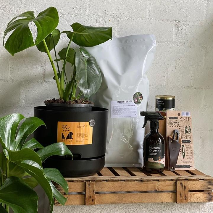 Tailored Corporate gifts - THE PLANT SOCIETY ONLINE OUTPOST