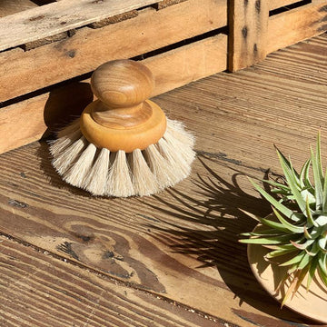 Dish Brush Round With Knob by Iris Hantverk - THE PLANT SOCIETY ONLINE OUTPOST