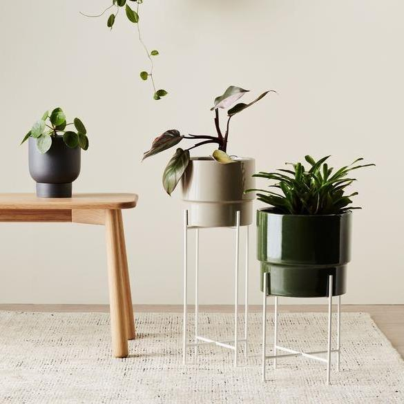 White Iris Plant Stand by Evergreen Collective