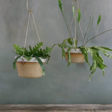 Desert Brass Hanging Planter by Leaf & Thread