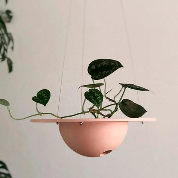 UFO Planter by Izawa Seito