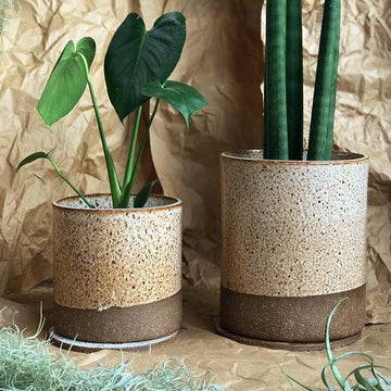 Caramello Planter by Jenn Johnston ceramic pot handmade earthy greenery monstera deliciosa sanseveria cylindrica snake plant