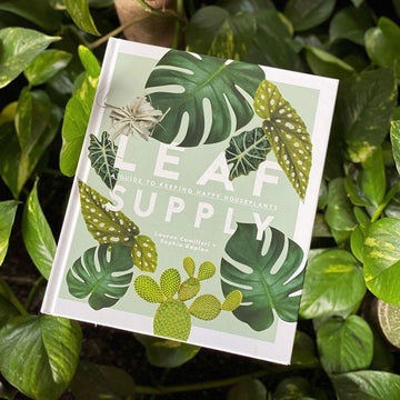 Leaf Supply - A guide to keeping happy houseplants by Lauren Camilleri & Sophia Kaplan - THE PLANT SOCIETY ONLINE OUTPOST