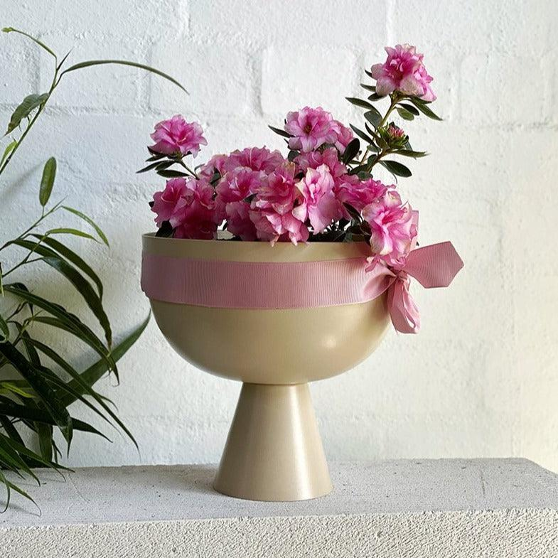 Large Vera Planter by Lightly