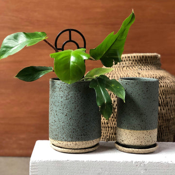Duck Egg Tall Planter by Lisa Peri