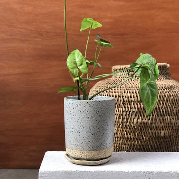 Grey Tall Planter by Lisa Peri