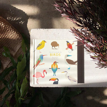 The Little Guide To Birds by Alison Davies & Tom Frost