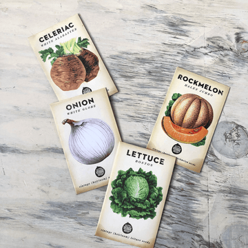 Little Veggie Patch Seeds - Edible