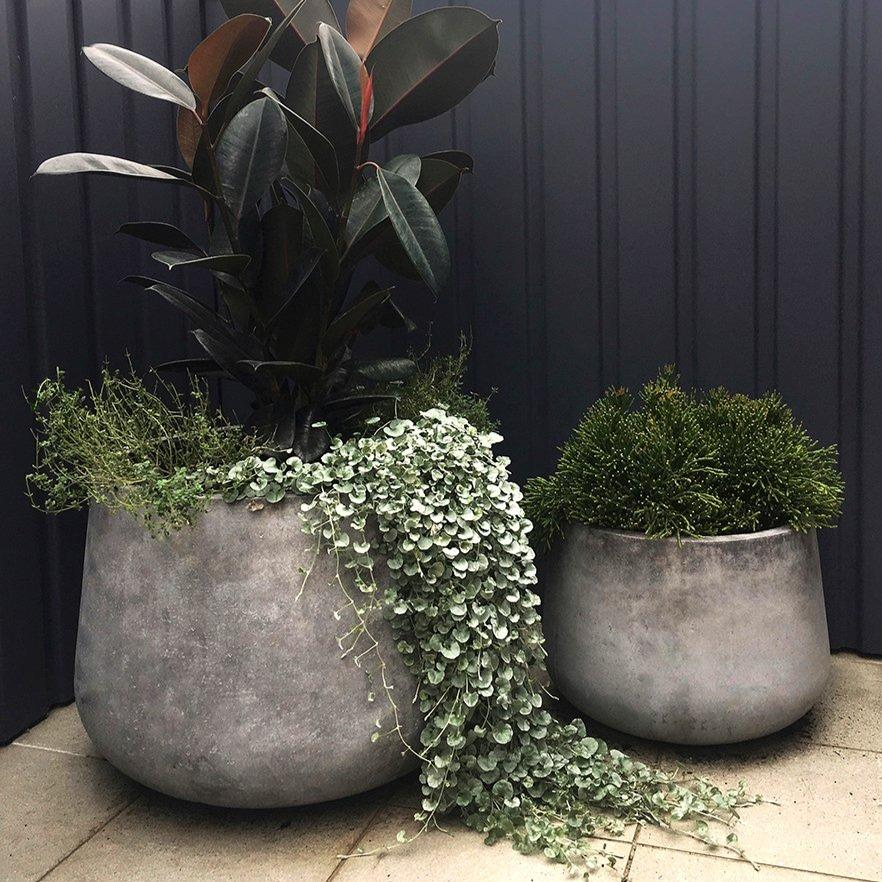 Low Tear Drop Planter