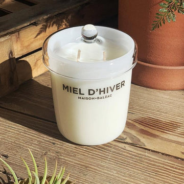 Maison Balzac Miel D'Hiver Candle - THE PLANT SOCIETY ONLINE OUTPOST