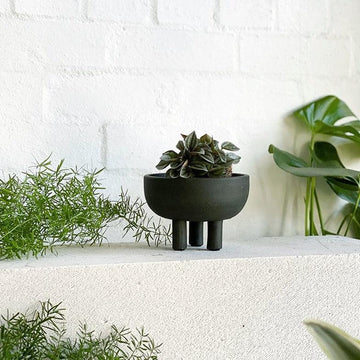 Kishi Planter by Papaya