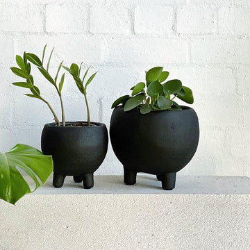 Monte Planter in black by Papaya