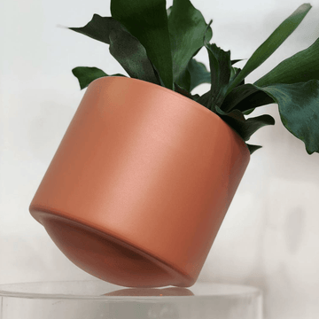 Skye Planter 240mm by Botanica