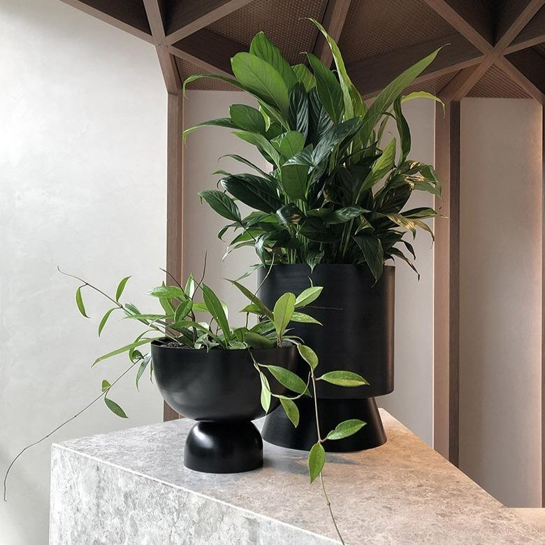 Large Palm Springs Planter with Large Black Goblet by Lightly Design