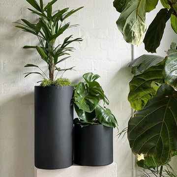 Tall Tub Planter - THE PLANT SOCIETY ONLINE OUTPOST