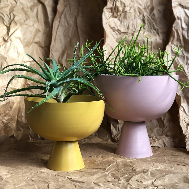 Small Vera Planter in Tumeric and Large Vera Planter in Orchid by Lightly Design