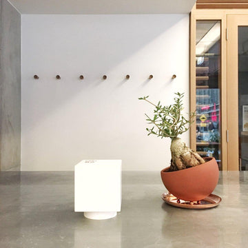 Marco Planter in Tokoname by Izawa Seito Ceramics - THE PLANT SOCIETY ONLINE OUTPOST