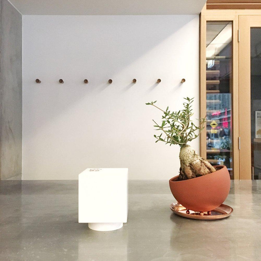 Marco Planter in Tokoname by Izawa Seito Ceramics