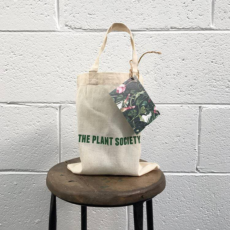 The Plant Society Home Plant Butler Kit in Bag