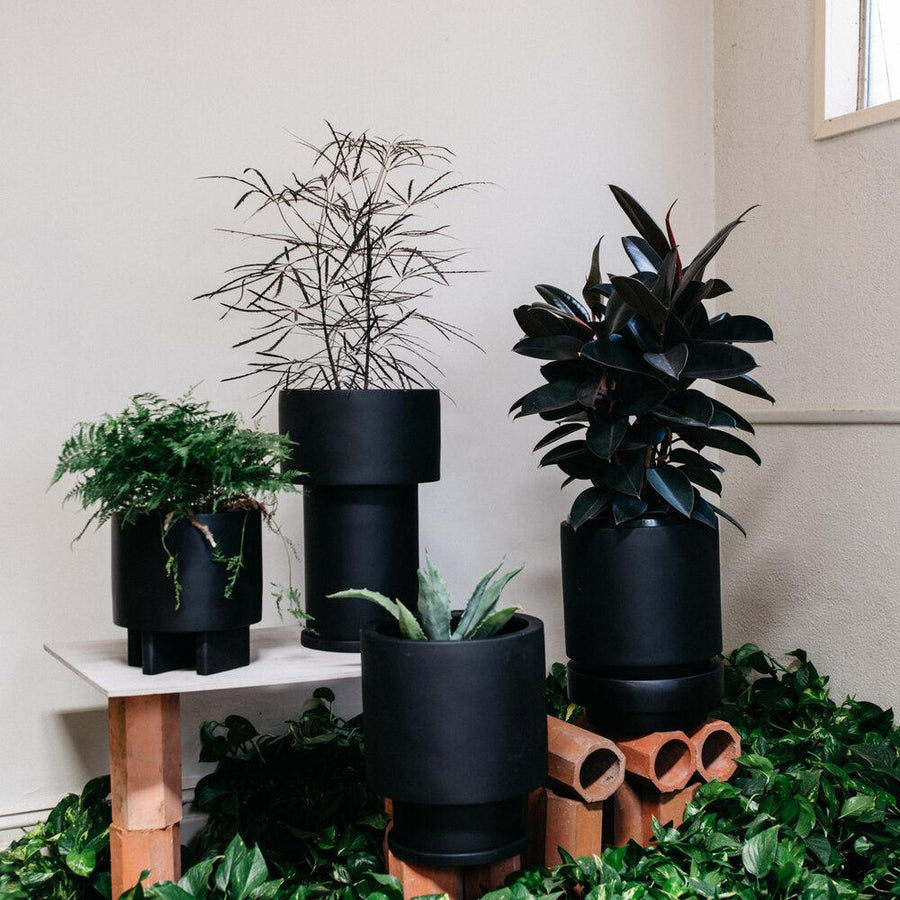 Totem planters black  by The Plant Society