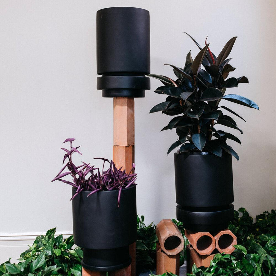 Pier Planter black  by The Plant Society
