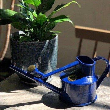 haws blue watering can with peace lilly