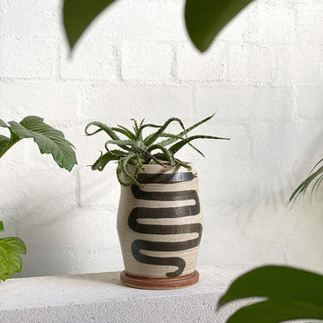 Large Snake Planter in Brushed Toast by Peta Armstrong Ceramics
