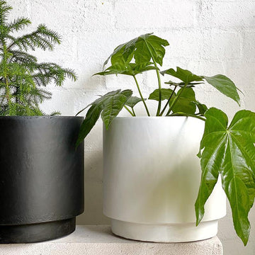 High Line Planter in White