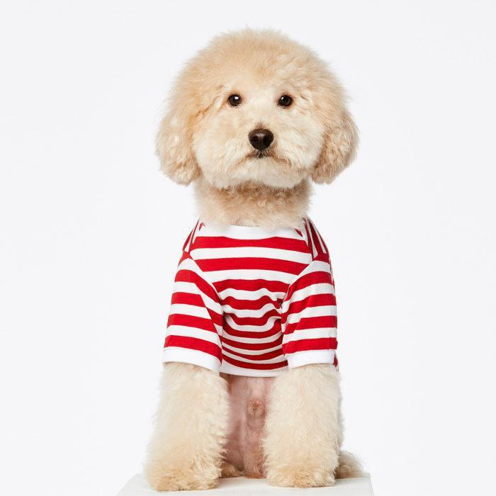 David Stripped Dog T-Shirt in Red by The Painter's Wife