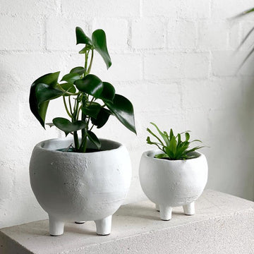 Monte Planter in white by Papaya