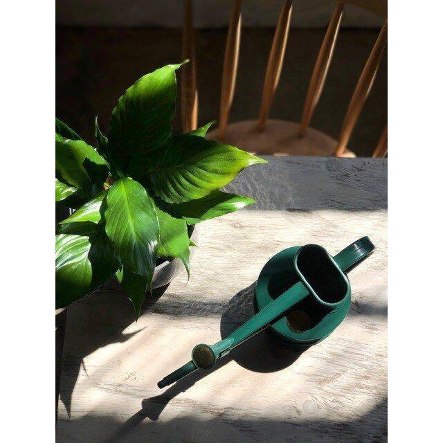 haws green watering can with piece lilly