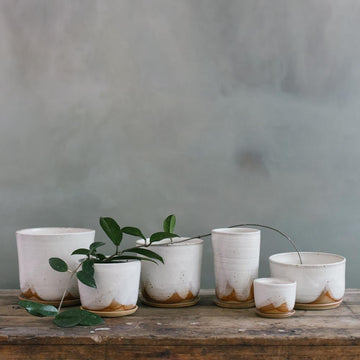 Glacier Planter by Leaf & Thread