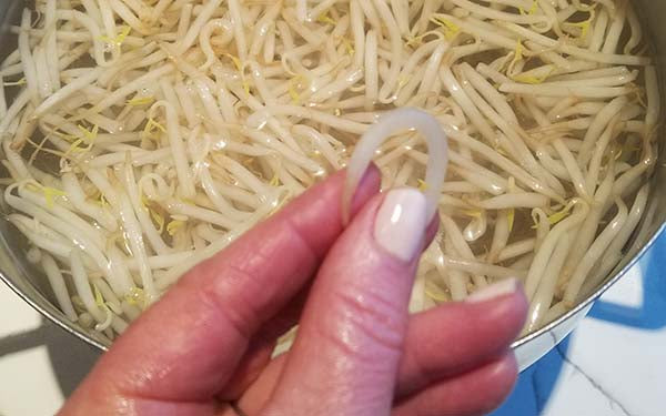 "Bring a large pot of water to a boil and put bean sprouts into pot. Immediately turn off heat and allow to sit, uncovered, for 5-7 minutes, or until a sprout can be turned into a ""u"" shape without breaking."