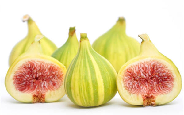 Panche Striped Tiger Figs