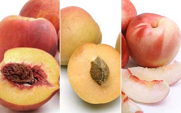 Peaches, Apricots, Nectarines