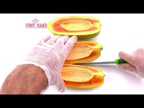 Video of Papaya Preparation