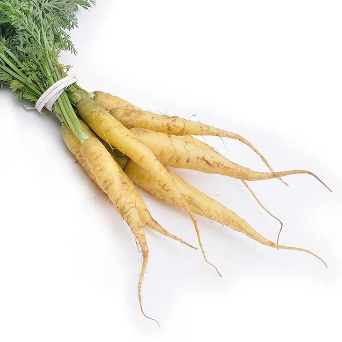Image of  Baby White Carrots Vegetables
