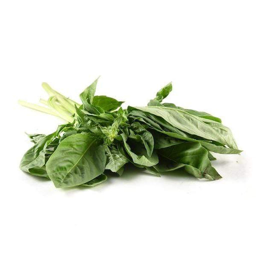 Image of  Basil Other