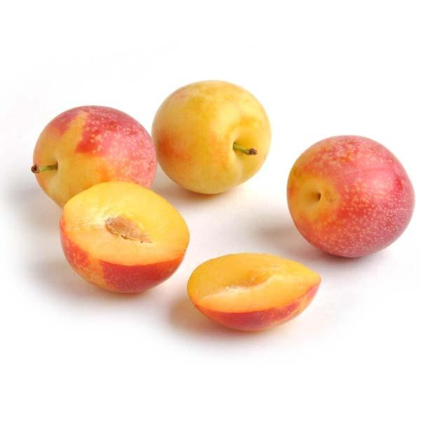 Image of  Cherry Plums Fruit