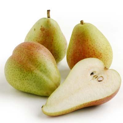 Image of  Forelle Pears Fruit