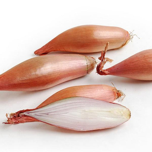 Image of  French Echalion Shallots Vegetables