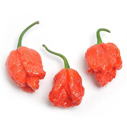 Image of  Fresh Reaper Peppers Vegetables